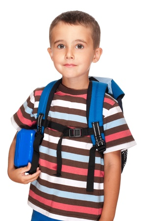 elementary student: Little boy elementary student with backpack and sandwich box isolated on white