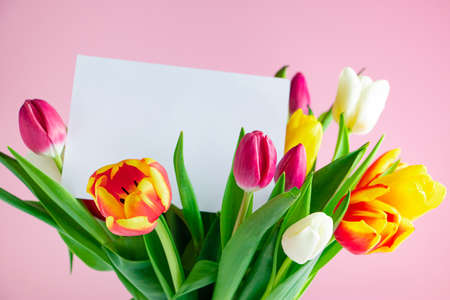 Delicate tulips and greeting card on pink background. Spring concept. Happy easter. Place for text.