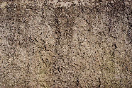 The grim brown embossed texture, fragment fencing