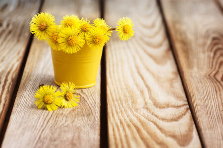 Bouquet of flowers mother and stepmother, on a wooden table Stock Photo