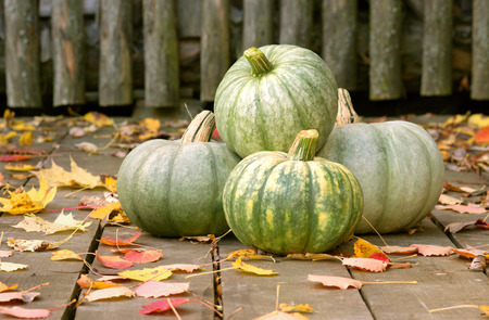 Ripe pumpkins with autumn leaves on the wooden background Stock Photo
