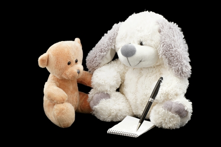 toyshop: Write teddy bears message