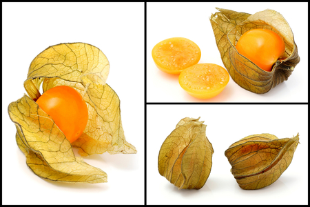 shoppe: Cape gooseberry  Physalis  ,collage of three images