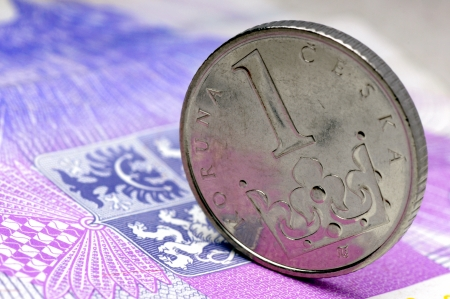calibrated: Czech money -Crown stands on the  banknote