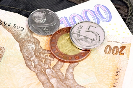 economise: Czech money  crowns  lying on the wallet
