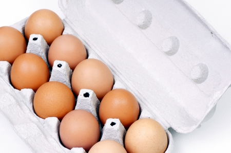 albumin: Eggs stored in the container
