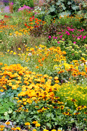 groupings: Blooming Gardens