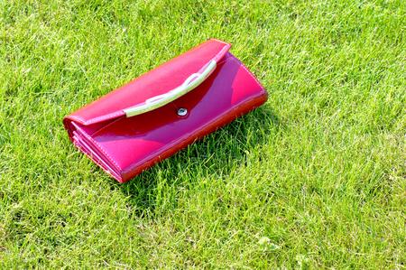 草の上の女性の財布 写真素材