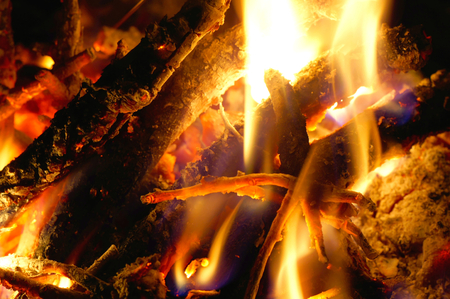 woodsy: Close-up of the flame of burning wood