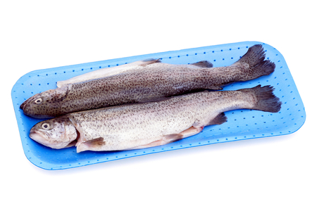 gutted: Two fresh trouts chilled and gutted. Stock Photo