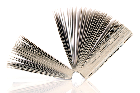 single story: Laid open book on white background.