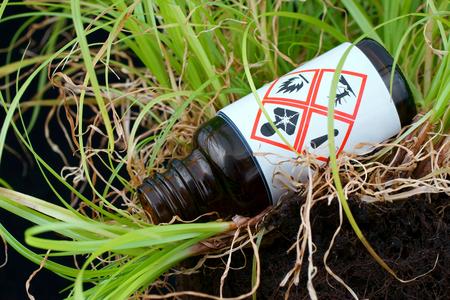 mundo contaminado: La botella de vidrio a partir de fluidos peligrosos que yacen en la hierba.