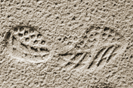 quicksand: Track shoes in the sand.