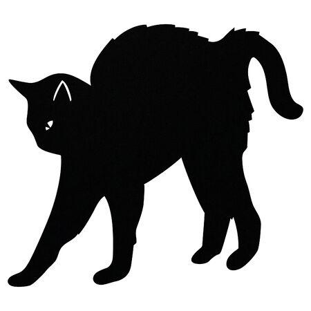 schwarze Katze spielt