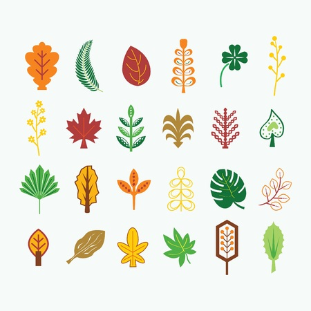 Abstract colorful fall, summer and tropical leaves icons set on light gray background