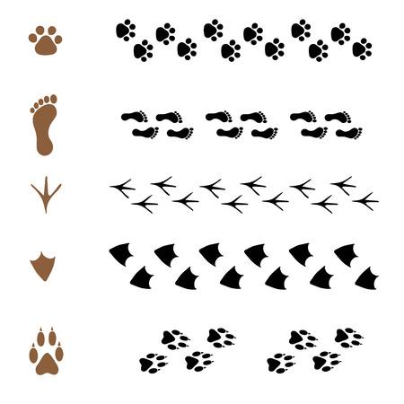 huella pie: conjunto de vector patrón cepillos en forma de huellas de animales Vectores