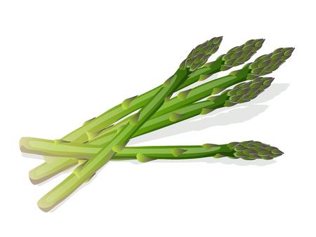 green asparagus Ilustrace