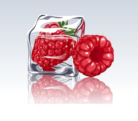 Frozen raspberry in ice cube