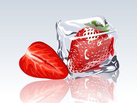 refrigerate: Frozen strawberry in ice cube Illustration