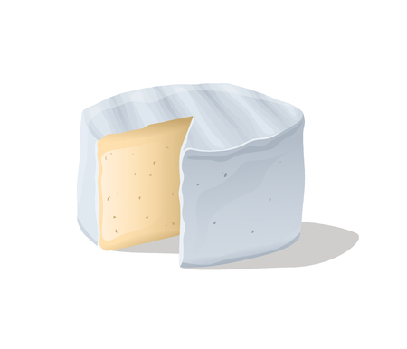 Soft camembert cheese block. Vector illustration Ilustração