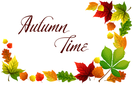 Colorful autumn leaves. Autumn time card. Vector illustration.