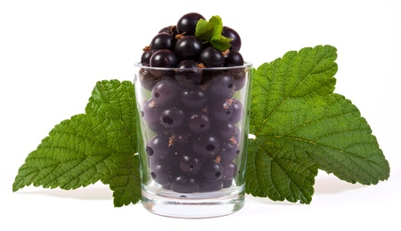 black currants in a glass with green leaves Stock Photo