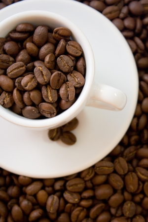 a white coffee cup full of beans  on coffee beans