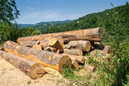 lumber on roadside with sawdust in front of mountains background Stock Photo