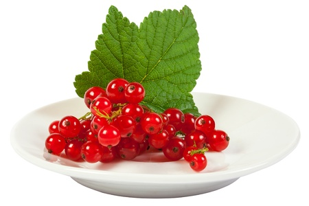 isolated wet redcurrant with green leaf on white plate close