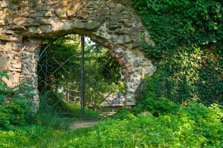 old stone wall covered with green leaves Stock Photo