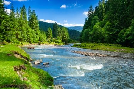landschap met bergen bomen en een rivier in de voorkant