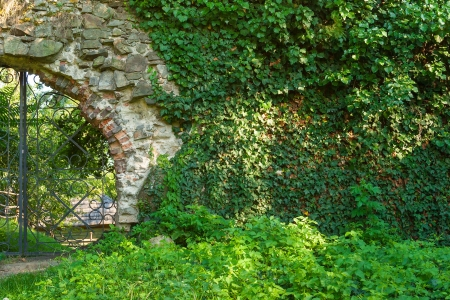 old solid stone wall with green plant over and old iron gate Stock Photo - 18964870