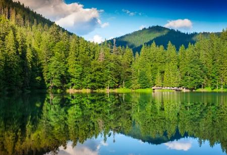 山の背景に湖およびマツ森林のある風景します。