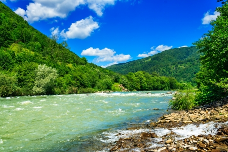 wild river flowing between green mountains on a clear summer day Stock Photo