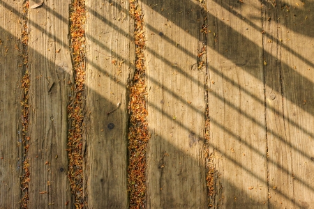 old weathered boards with fine foliage and oblique shadow