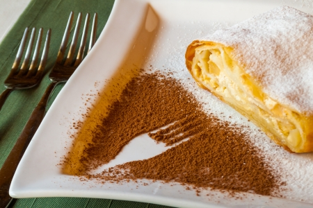 delicious strudel stuffed with cottage cheese, assign with powdered sugar on a white plate with a fork pattern of cocoa powder
