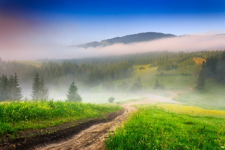 crossroads of mountain roads near the woods and glade in the morning mist photo