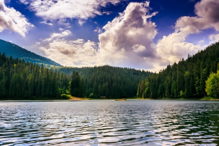 smooth surface of the pond near the forest with a beautiful evening cloudy sky Stock Photo