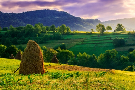 Stack of hay on the hillside under a menacing sky in the early morning photo
