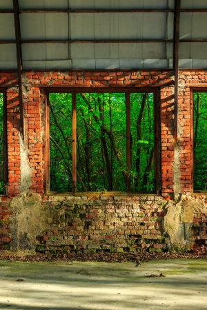 view of the forest through the window frame of an abandoned hangar