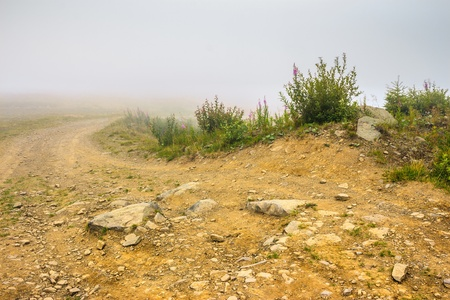 dirt ground road with rocks in the misty mountains