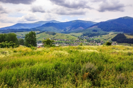 Meadow with wild herbs on a hillside facing the settlement in mountains Stock Photo - 21725037