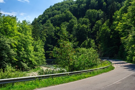 road in the mountains near the forest turns left