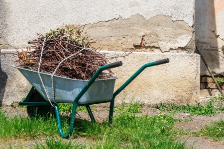 wheelbarrow filled with cut branches standing in the grass near the old wall