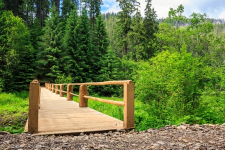 unpaved road: new wooden bridge leading from the unpaved road to a dense coniferous forest. horizontal Stock Photo