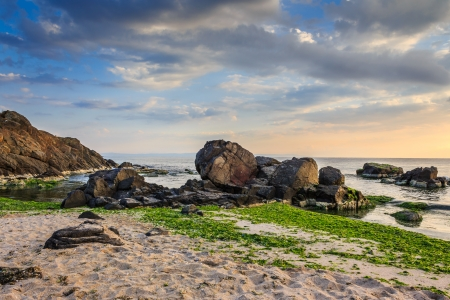 large rocks and seaweed on the sandy coast of the sea, on a cloudy morning Stock Photo