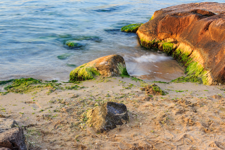 small sea wave beating against the big orange stone, covered with seaweed on  sandy beach