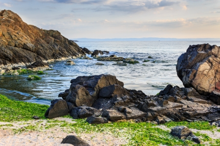 number of stones and rock on the sandy sea coast. seaweed lie on the sand made by the storm. Stock Photo