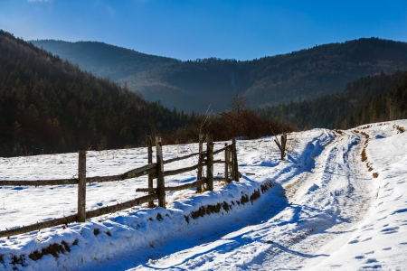 winter mountain landscape. winding road that leads into the pine forest covered with snow. wooden fence stands near the road.