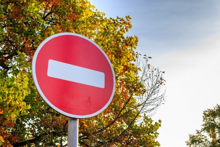 traffic stop sign on a yellowed autumn tree. message: stop the fall, I want summer